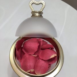 LADUREE Les Merveilleuses Makeup FACE COLOR ROSE LADUREE with Petal Refill